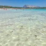 Visitare la spiaggia di Cala Brandinchi %