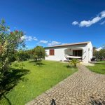 14038 Charming house in a quiet location with a large garden in Baia S. Anna, Budoni %